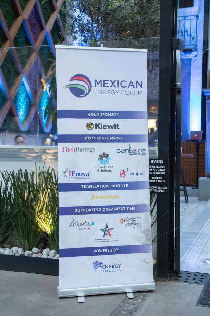 Mexican Energy Forum 2019_small (218)